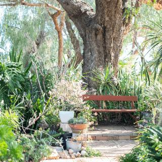 Greenough Museum Gardens